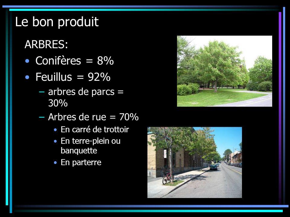 ARBRES: Conifères = 8% Feuillus = 92% –arbres de parcs = 30% –Arbres de rue = 70% En carré de trottoir En terre-plein ou banquette En parterre