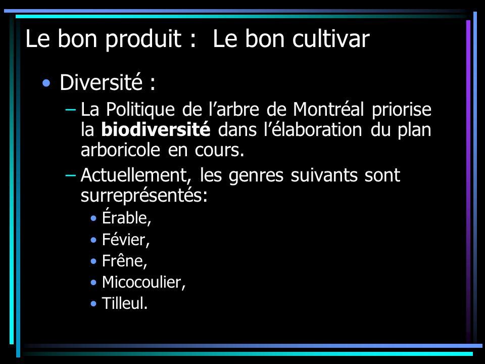 Diversité : –La Politique de larbre de Montréal priorise la biodiversité dans lélaboration du plan arboricole en cours. –Actuellement, les genres suiv