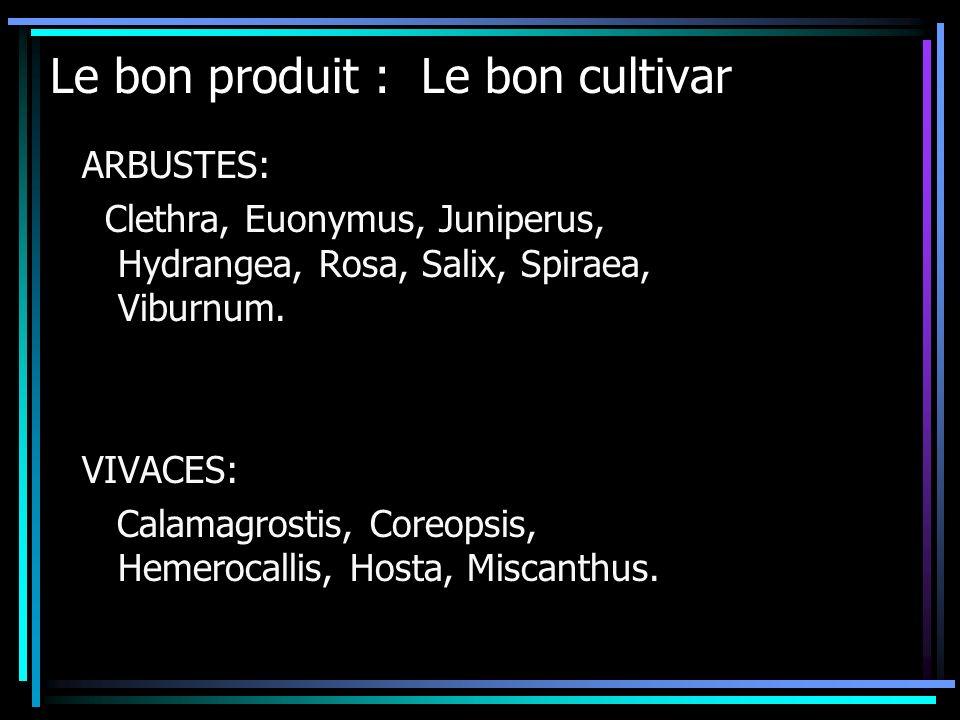 ARBUSTES: Clethra, Euonymus, Juniperus, Hydrangea, Rosa, Salix, Spiraea, Viburnum. VIVACES: Calamagrostis, Coreopsis, Hemerocallis, Hosta, Miscanthus.