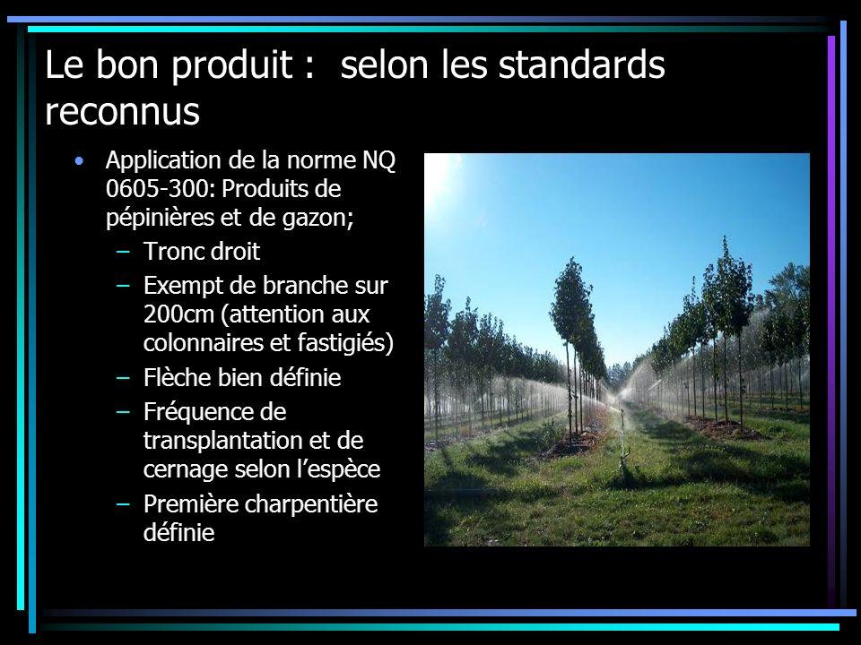 Le bon produit : selon les standards reconnus Application de la norme NQ 0605-300: Produits de pépinières et de gazon; –Tronc droit –Exempt de branche