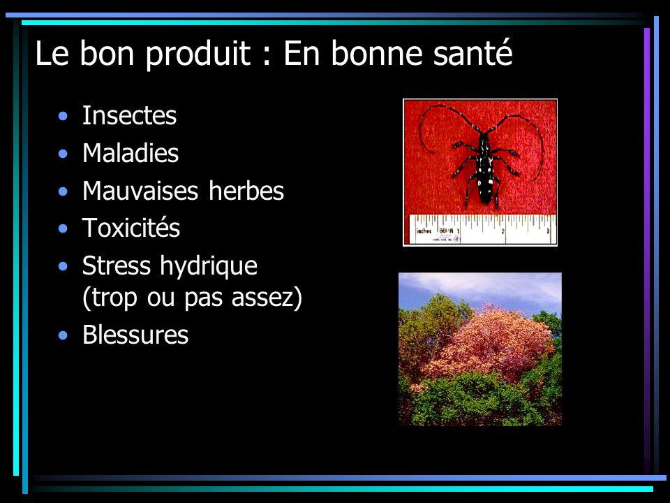 Le bon produit : En bonne santé Insectes Maladies Mauvaises herbes Toxicités Stress hydrique (trop ou pas assez) Blessures