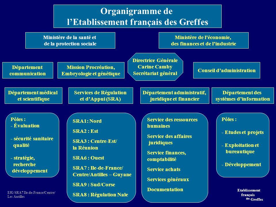 EfG SRA7 Ile-de-France/Centre/ Les Antilles Ministère de la santé et de la protection sociale Ministère de léconomie, des finances et de lindustrie Département médical et scientifique Conseil dadministration Département communication Mission Procréation, Embryologie et génétique Pôles : - Évaluation - sécurité sanitaire qualité - stratégie, recherche développement Services de Régulation et dAppui (SRA) SRA1: Nord SRA2 : Est SRA3 : Centre-Est/ la Réunion SRA6 : Ouest SRA7 : Ile-de-France/ Centre/Antilles – Guyane SRA9 : Sud/Corse SRA8 : Régulation Nale Département administratif, juridique et financier Service des ressources humaines Service des affaires juridiques Service finances, comptabilité Service achats Services généraux Documentation Département des systèmes dinformation Pôles : - Etudes et projets - Exploitation et bureautique - Développement Directrice Générale Carine Camby Secrétariat général Organigramme de lEtablissement français des Greffes Etablissement français des Greffes