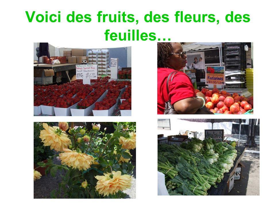 Voici des fruits, des fleurs, des feuilles…