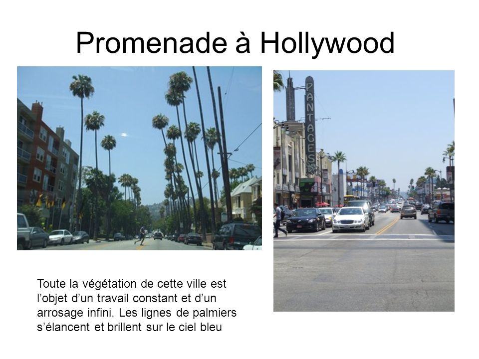 The Walk of Fame se trouve sur Hollywood Boulevard entre Gower Street et la Brea Avenue et sur Vine Street entre Yucca Street et Sunset Boulevard.