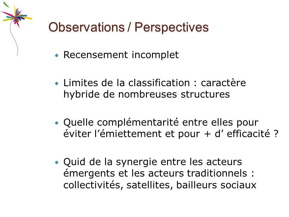 Observations / Perspectives Recensement incomplet Limites de la classification : caractère hybride de nombreuses structures Quelle complémentarité entre elles pour éviter lémiettement et pour + d efficacité .