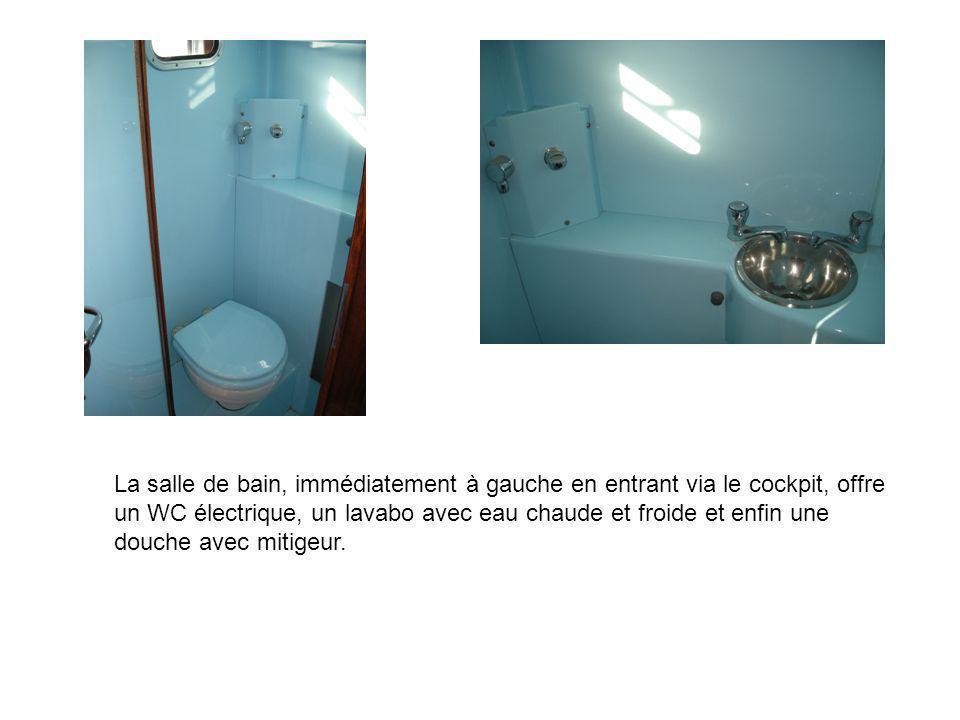 La salle de bain, immédiatement à gauche en entrant via le cockpit, offre un WC électrique, un lavabo avec eau chaude et froide et enfin une douche av