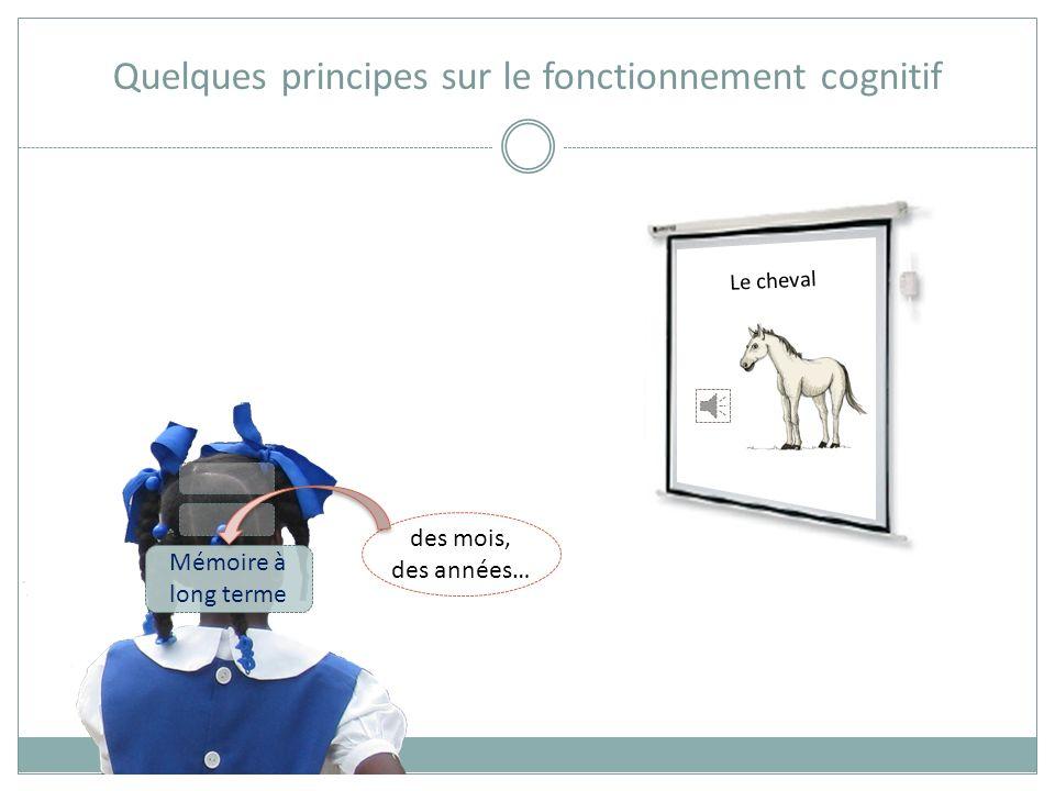 Quelques principes sur le fonctionnement cognitif Mémoire de travail 6 à 7 unités Le cheval