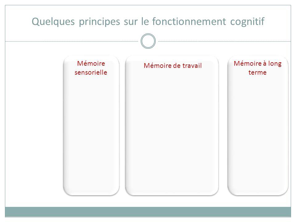 Quelques principes sur le fonctionnement cognitif Mémoire à long terme des mois, des années… Le cheval