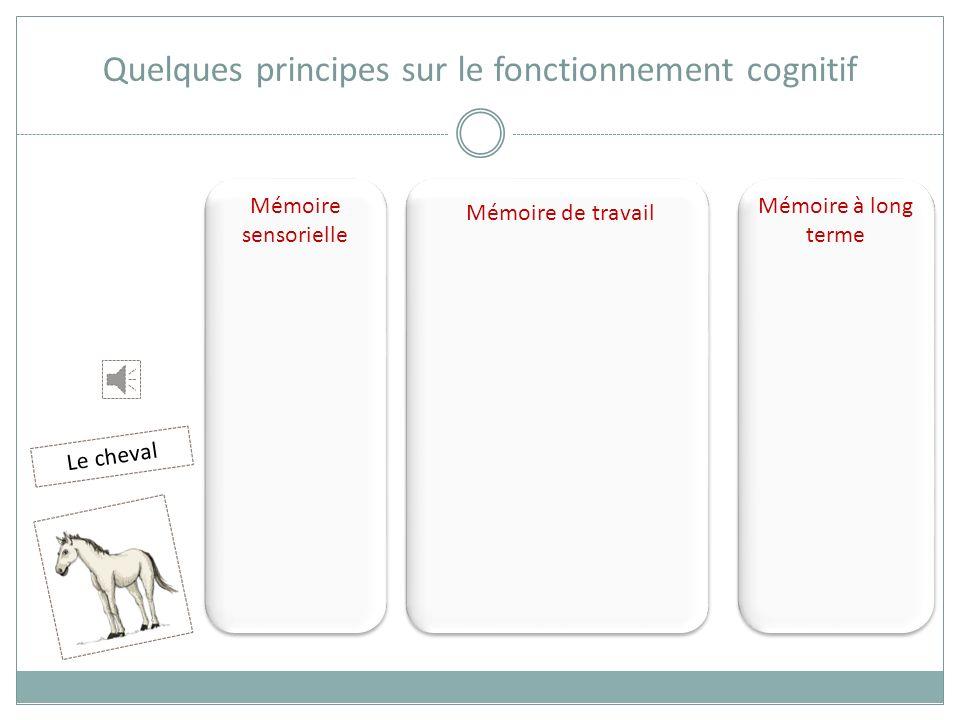 Mémoire sensorielle Mémoire de travail Mémoire à long terme Quelques principes sur le fonctionnement cognitif