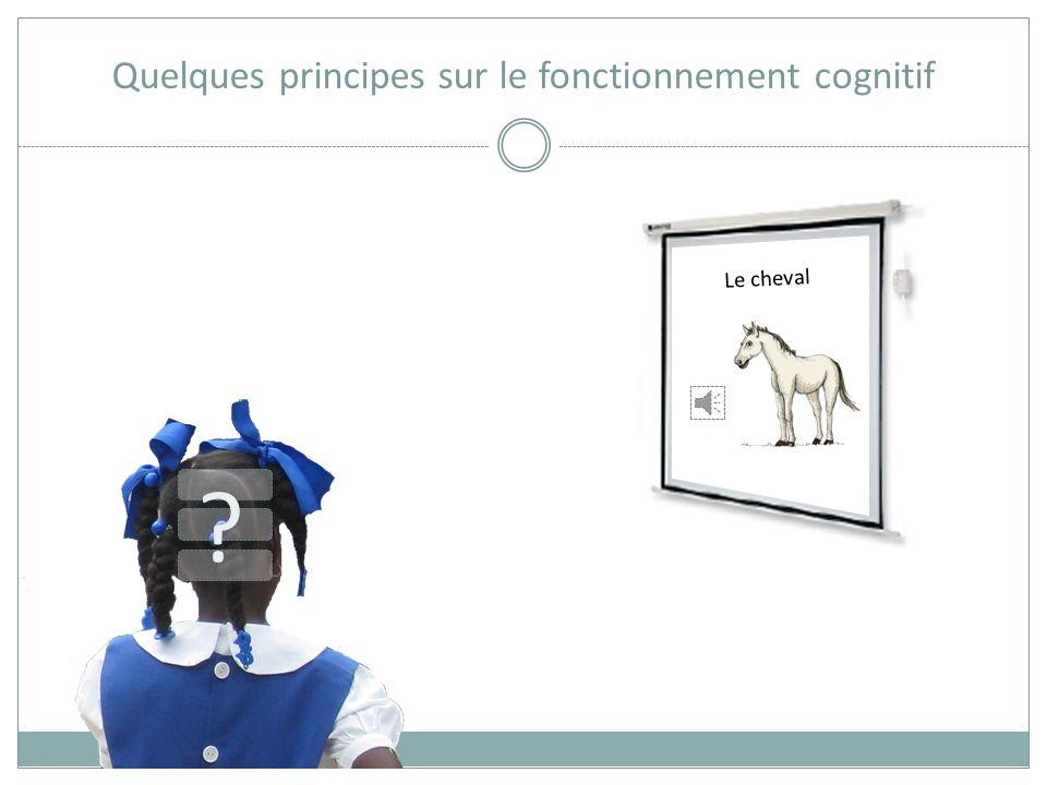 Quelques principes sur le fonctionnement cognitif Le cheval