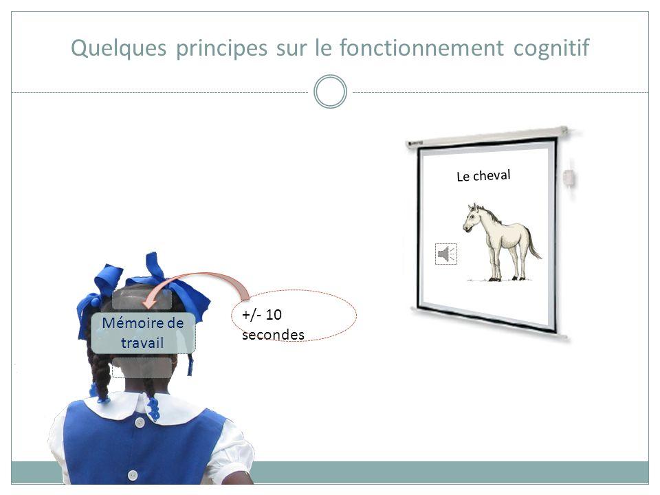 Quelques principes sur le fonctionnement cognitif Mémoire sensorielle 100 ms à 2 sec Le cheval