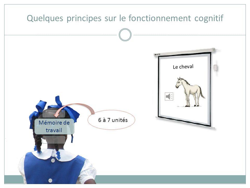 Quelques principes sur le fonctionnement cognitif Mémoire de travail +/- 10 secondes Le cheval