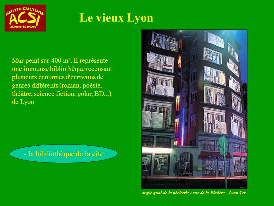 angle quai de la pêcherie / rue de la Platière - Lyon 1er Le vieux Lyon - la bibliothèque de la cité Mur peint sur 400 m².