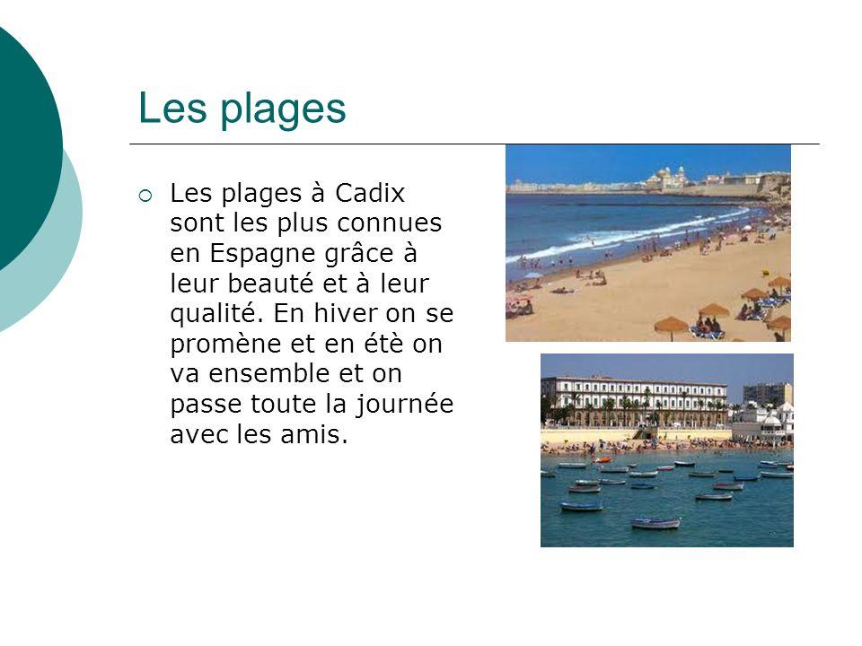 Les plages Les plages à Cadix sont les plus connues en Espagne grâce à leur beauté et à leur qualité.