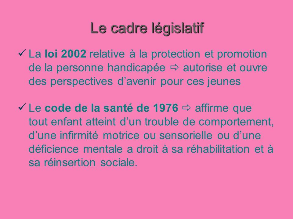 Le cadre législatif La loi 2002 relative à la protection et promotion de la personne handicapée autorise et ouvre des perspectives davenir pour ces je