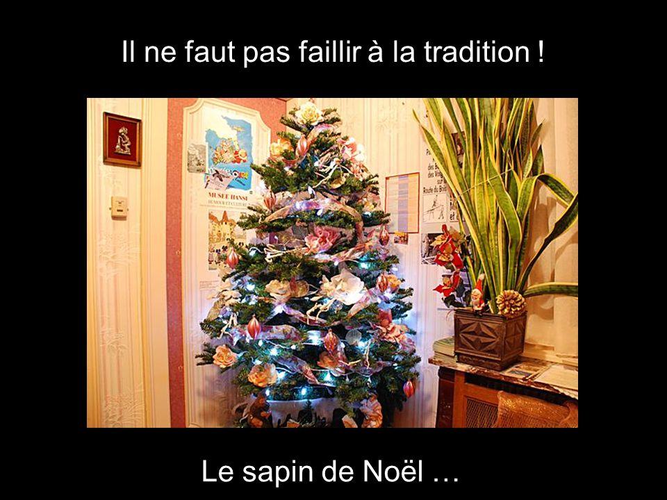 Il ne faut pas faillir à la tradition ! Le sapin de Noël …