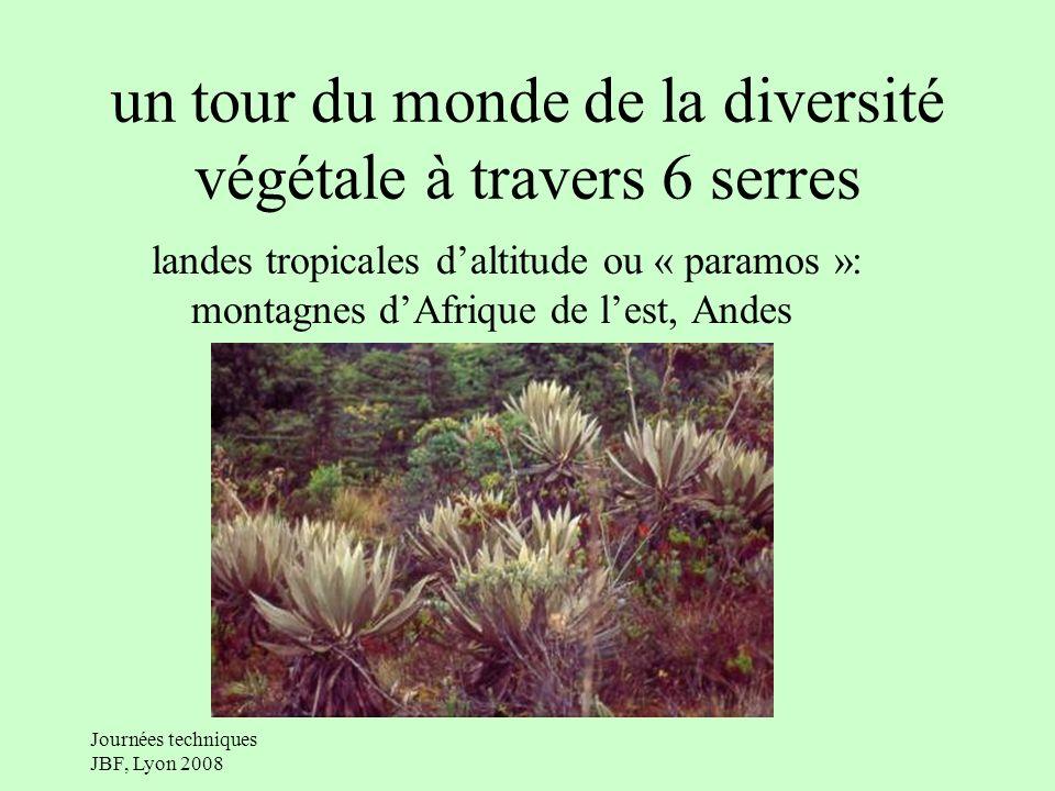 Journées techniques JBF, Lyon 2008 un tour du monde de la diversité végétale à travers 6 serres landes tropicales daltitude ou « paramos »: montagnes dAfrique de lest, Andes