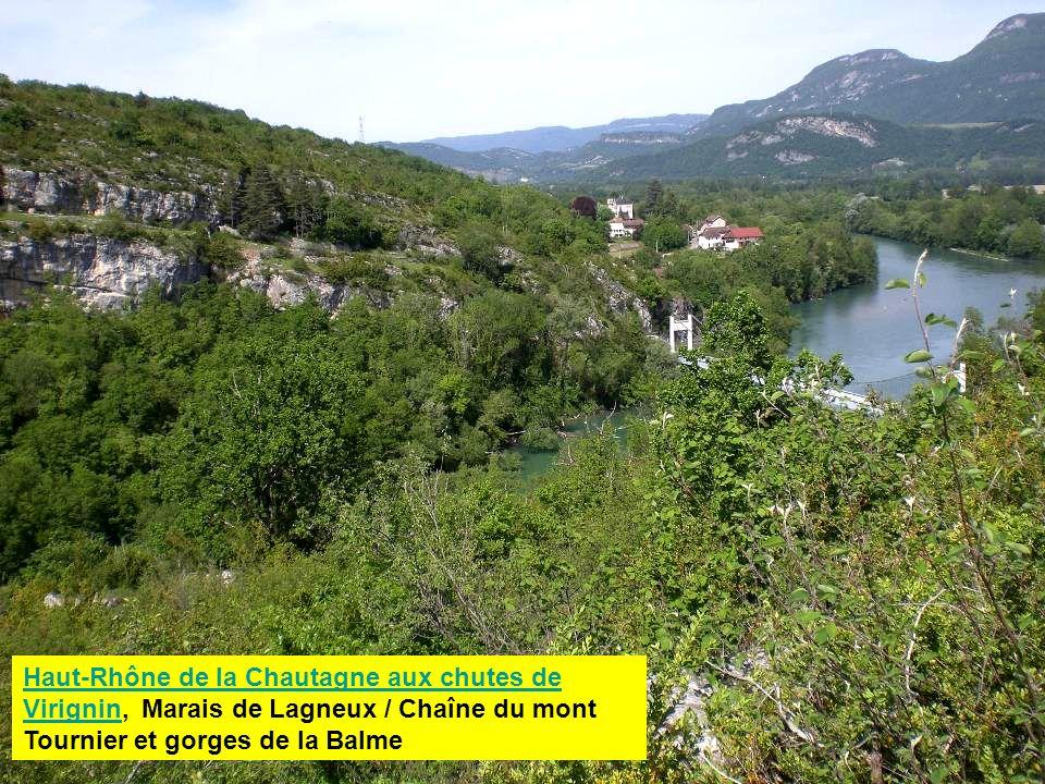 Les gorges du Haut-Rhône