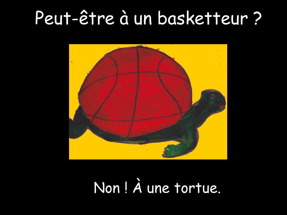 Peut-être à un basketteur Non ! À une tortue.