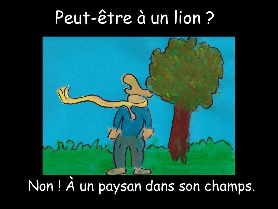 Peut-être à un lion Non ! À un paysan dans son champs.