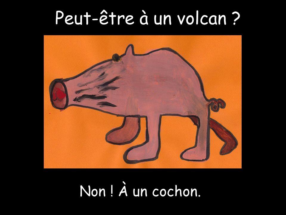 Peut-être à un volcan Non ! À un cochon.
