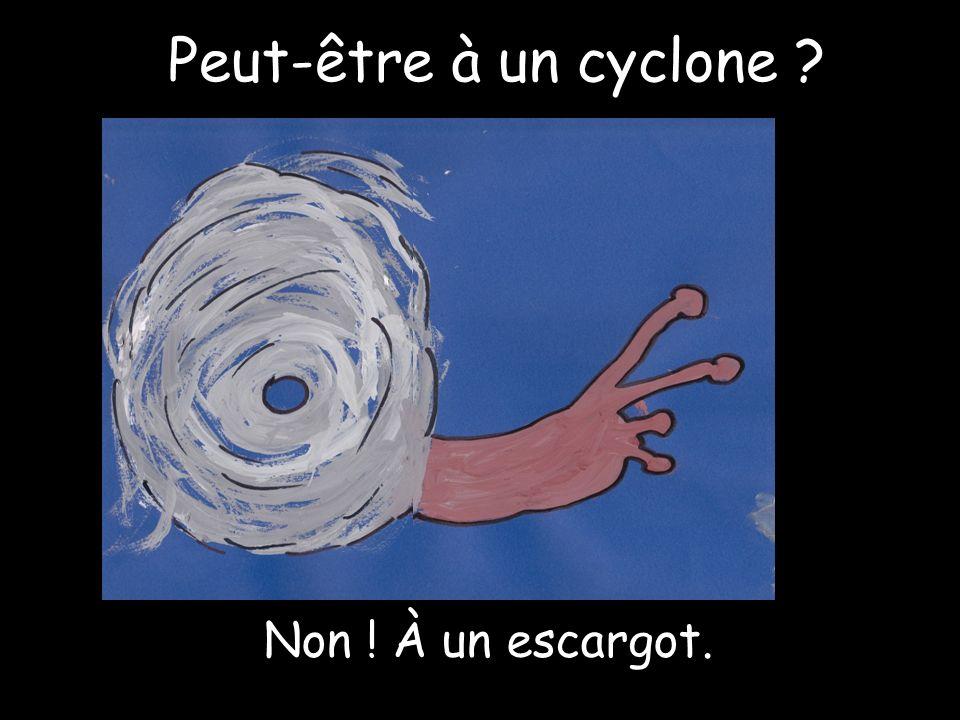 Peut-être à un cyclone Non ! À un escargot.