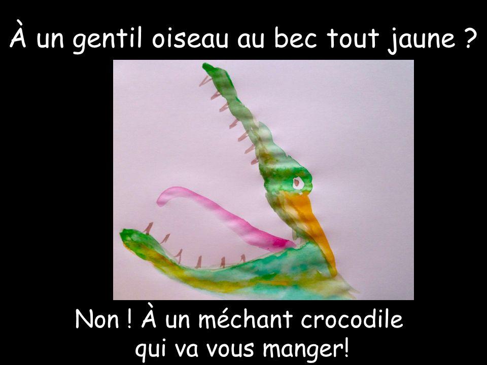 À un gentil oiseau au bec tout jaune Non ! À un méchant crocodile qui va vous manger!