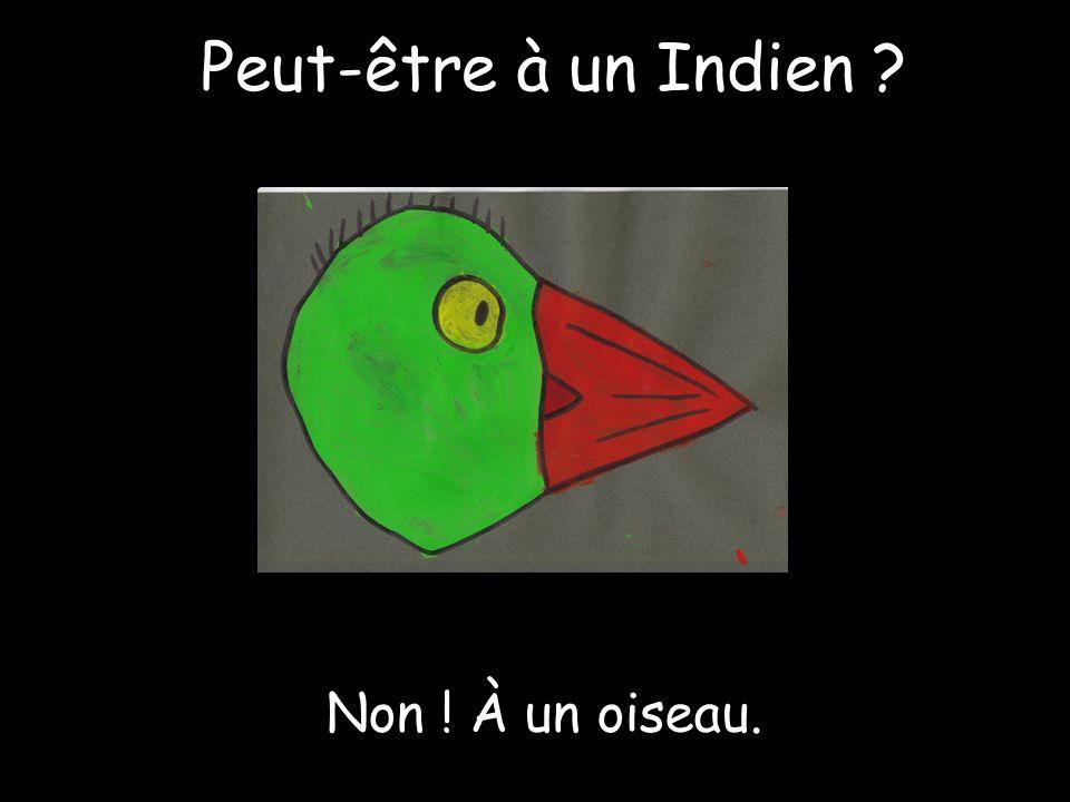 Peut-être à un Indien Non ! À un oiseau.