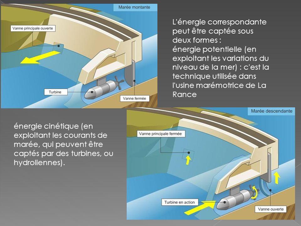 L énergie correspondante peut être captée sous deux formes : énergie potentielle (en exploitant les variations du niveau de la mer) : c est la technique utilisée dans l usine marémotrice de La Rance énergie cinétique (en exploitant les courants de marée, qui peuvent être captés par des turbines, ou hydroliennes).