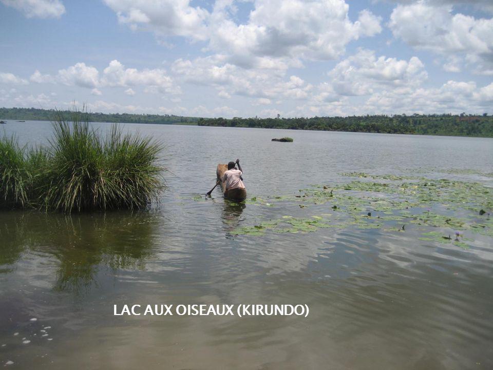 LAC AUX OISEAUX (KIRUNDO)