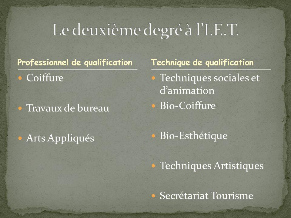 Professionnel de qualification Coiffure Travaux de bureau Arts Appliqués Techniques sociales et danimation Bio-Coiffure Bio-Esthétique Techniques Artistiques Secrétariat Tourisme Technique de qualification