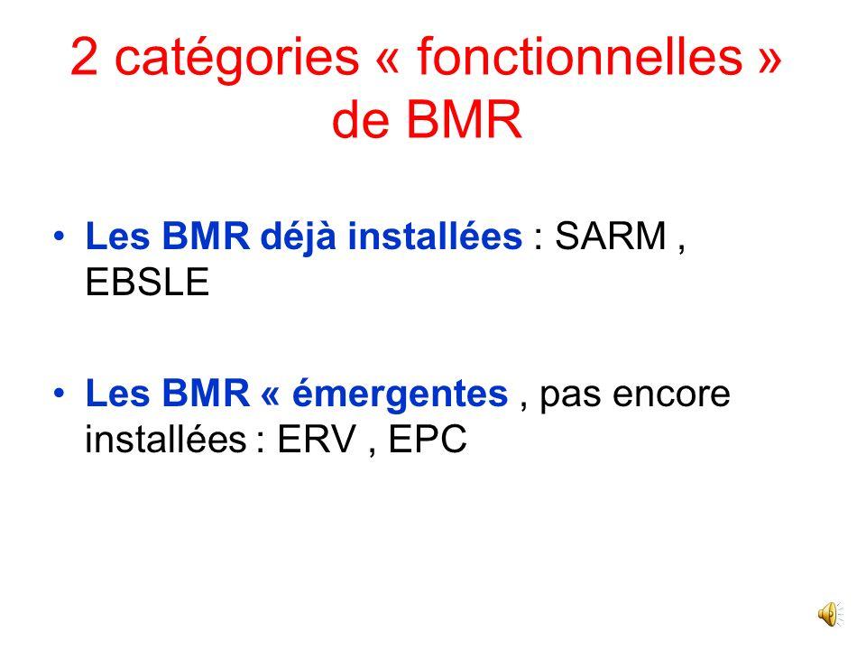 Choix des BMR prioritaires –Staphylococcus aureus résistant à la méticilline (SARM) –Entérobactéries productrices de ß-lactamase à spectre étendu (EBL