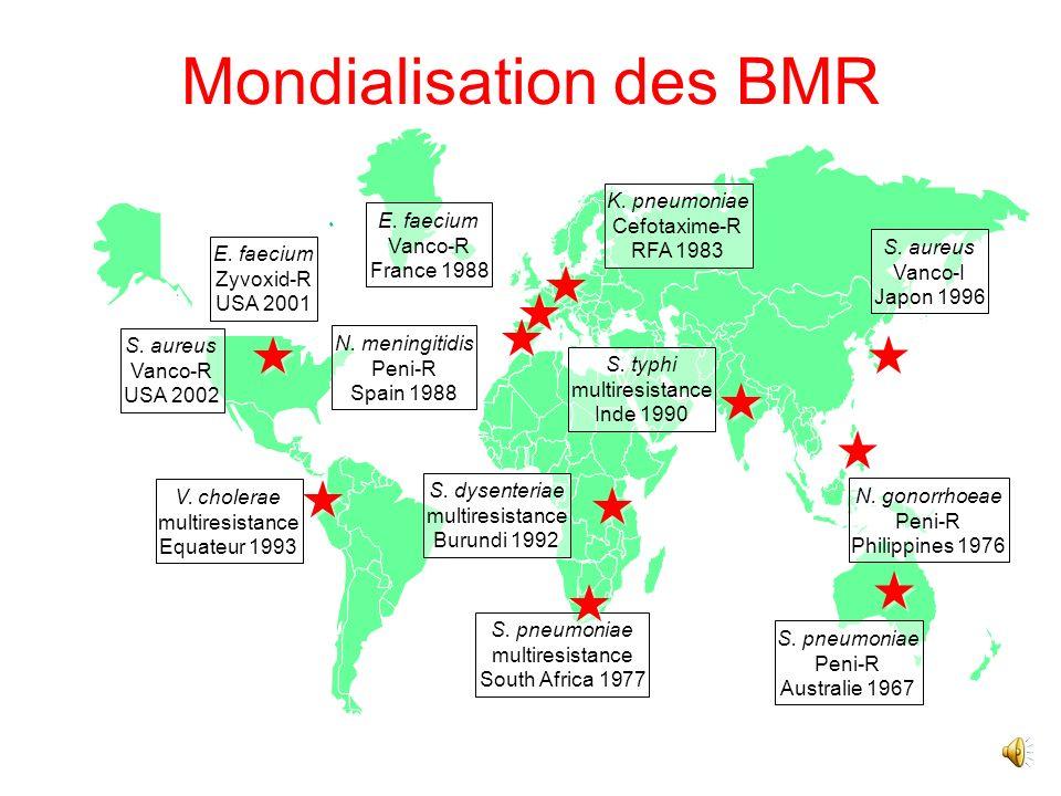 2 catégories « fonctionnelles » de BMR Les BMR déjà installées : SARM, EBSLE Les BMR « émergentes, pas encore installées : ERV, EPC
