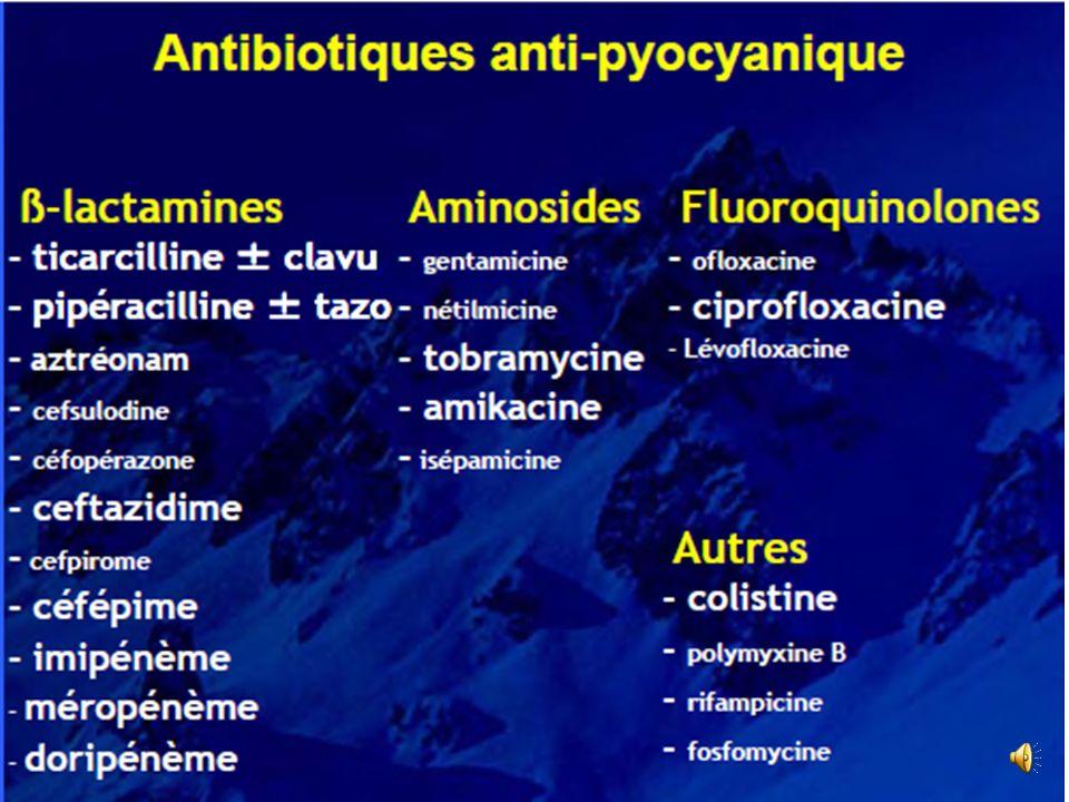 Antibiothérapie des pseudomonas aeruginosa