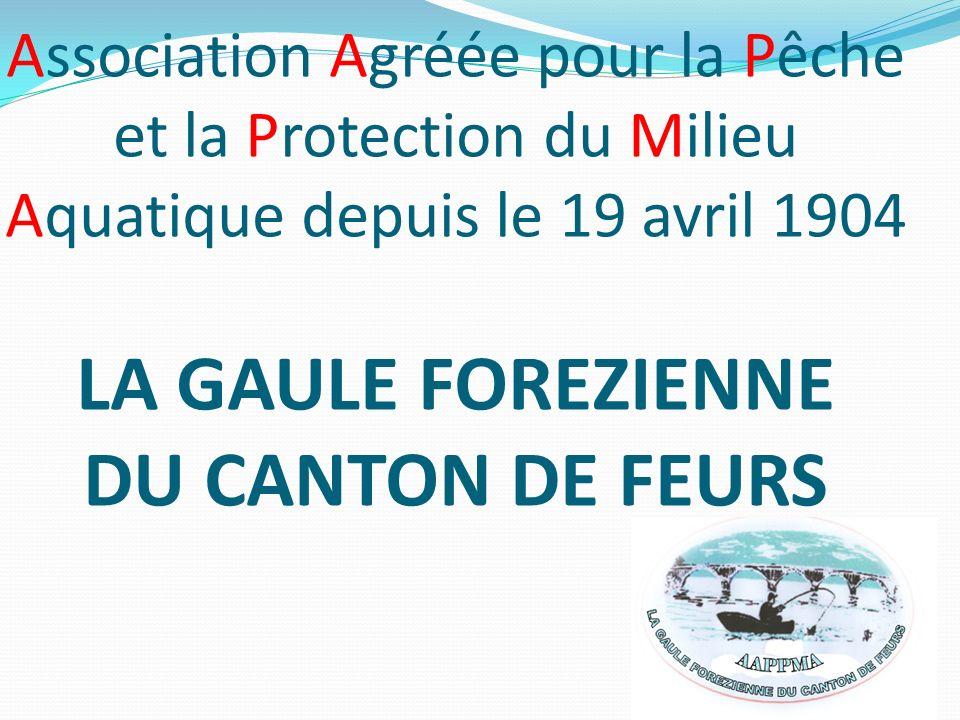 Association Agréée pour la Pêche et la Protection du Milieu Aquatique depuis le 19 avril 1904 LA GAULE FOREZIENNE DU CANTON DE FEURS