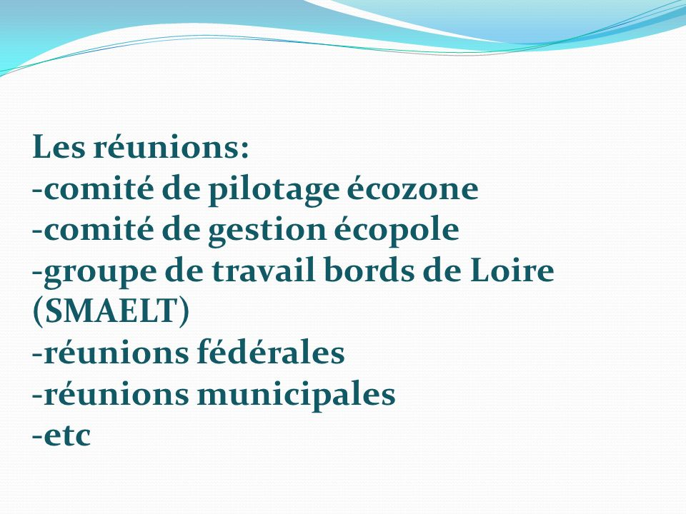 Les réunions: -comité de pilotage écozone -comité de gestion écopole -groupe de travail bords de Loire (SMAELT) -réunions fédérales -réunions municipa