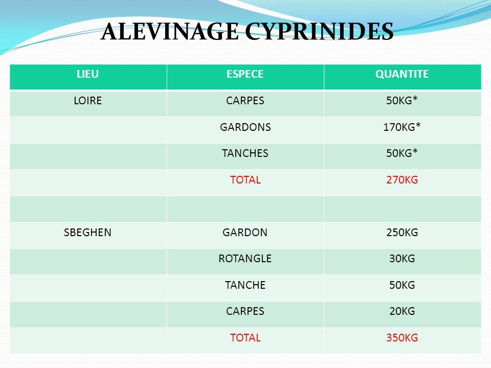 ALEVINAGE CYPRINIDES LIEUESPECEQUANTITE LOIRECARPES50KG* GARDONS170KG* TANCHES50KG* TOTAL270KG SBEGHENGARDON250KG ROTANGLE30KG TANCHE50KG CARPES20KG T