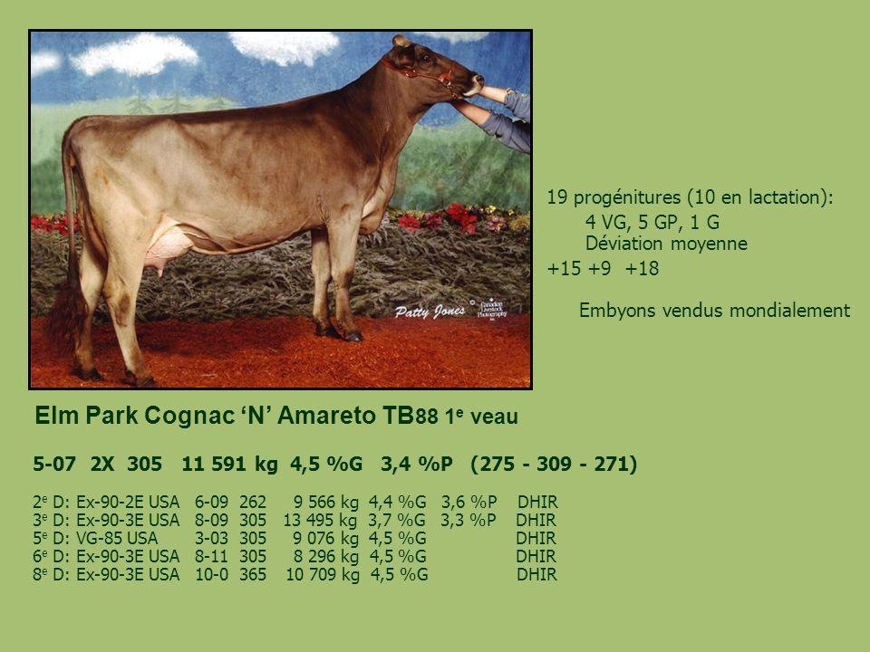Elm Park Cognac N Amareto TB 88 1 e veau 19 progénitures (10 en lactation): 4 VG, 5 GP, 1 G Déviation moyenne +15 +9 +18 Embyons vendus mondialement 5