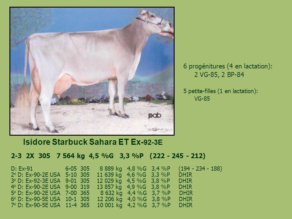 Isidore Starbuck Sahara ET Ex- 92-3E 6 progénitures (4 en lactation): 2 VG-85, 2 BP-84 5 petite-filles (1 en lactation): VG-85 2-3 2X 305 7 564 kg 4,5