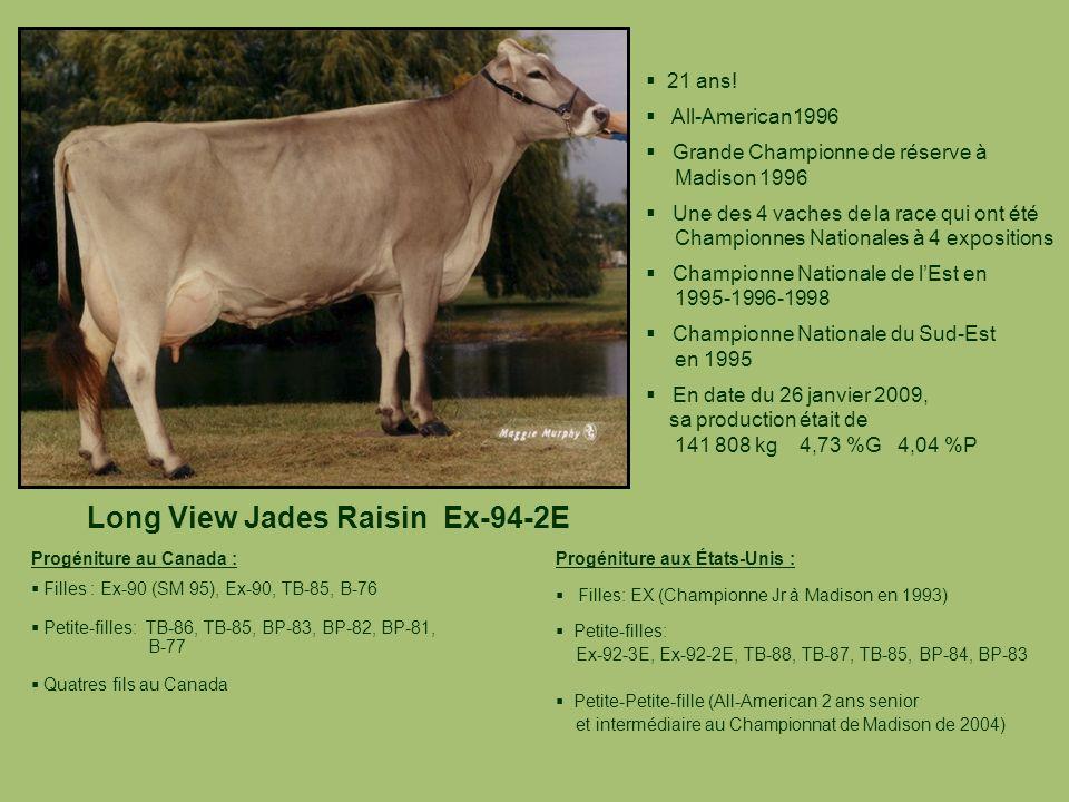 Long View Jades Raisin Ex-94-2E 21 ans! All-American1996 Grande Championne de réserve à Madison 1996 Une des 4 vaches de la race qui ont été Championn