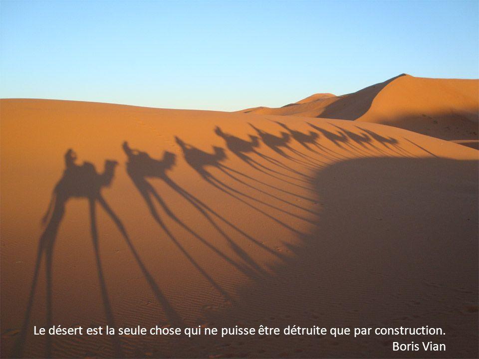 Le marchand de sable ne fait pas fortune dans le désert. Alexandre Vialatte