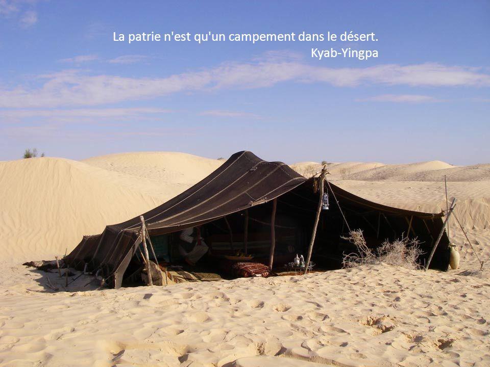 Pour le tribut que le désert fait payer à lhomme, il donne des compensations, de grandes respirations, un profond sommeil, et la communion avec les étoiles.
