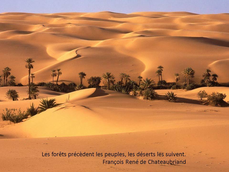 La patrie n est qu un campement dans le désert. Kyab-Yingpa