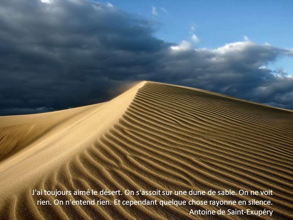 Les forêts précèdent les peuples, les déserts les suivent. François René de Chateaubriand