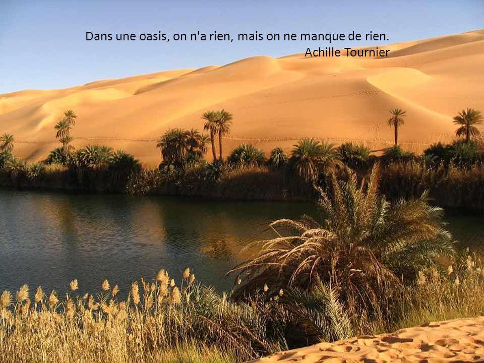 Le plus difficile, dans le désert, c est de trouver la sortie. Philippe Alexandre