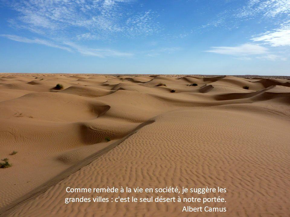 Certains déserts ne se traversent que dans un sens. Laurence Tardieu