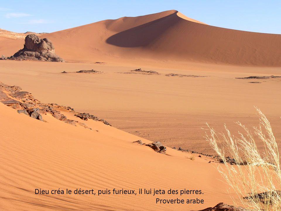 Si tu chante la beauté, même dans la solitude du désert, tu trouveras une oreille attentive.