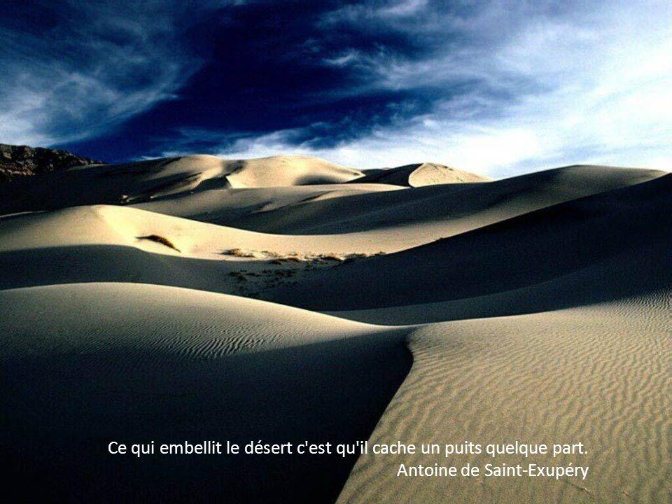Ce qui embellit le désert c est qu il cache un puits quelque part. Antoine de Saint-Exupéry