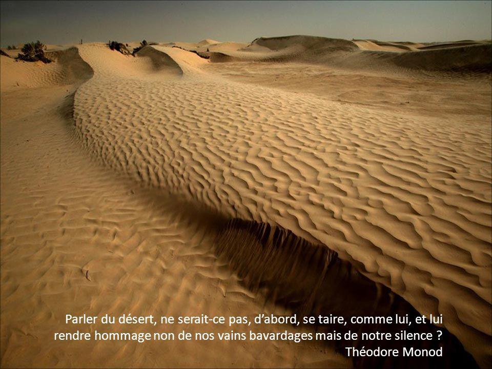 Parler du désert, ne serait-ce pas, dabord, se taire, comme lui, et lui rendre hommage non de nos vains bavardages mais de notre silence .