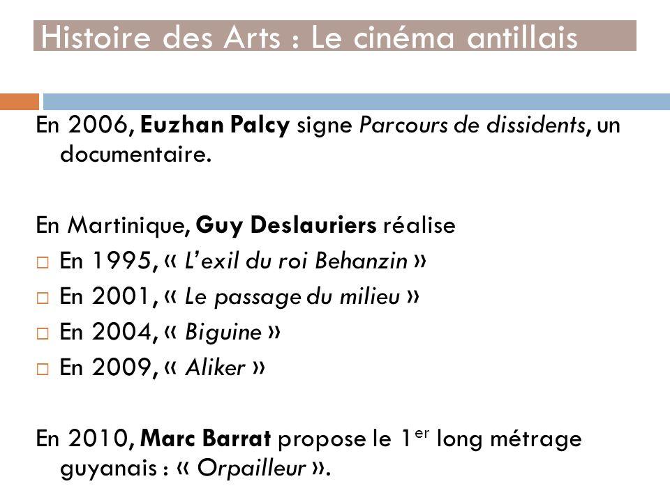 En 2006, Euzhan Palcy signe Parcours de dissidents, un documentaire. En Martinique, Guy Deslauriers réalise En 1995, « Lexil du roi Behanzin » En 2001